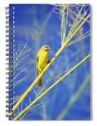 Yellow Fronted Canary Spiral Notebook