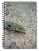 Yellow Goatfish Spiral Notebook