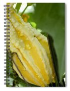 Yellow Gord Spiral Notebook