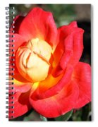 Yellow Heart Rose Spiral Notebook