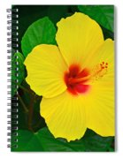 Yellow Hibiscus 3388 Spiral Notebook