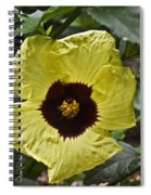 Yellow Hibiscus F134 Spiral Notebook