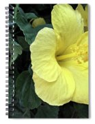 Yellow Hibiscus Watercolor Spiral Notebook