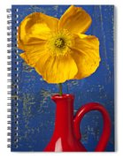 Yellow Iceland Poppy Red Pitcher Spiral Notebook