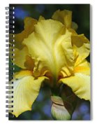 Yellow Iris Is For Passion Spiral Notebook