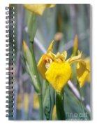 Yellow Iris Wild Flower Spiral Notebook