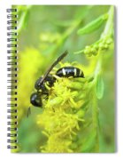 Yellow Jacket Spiral Notebook