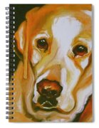 Yellow Lab Amazing Grace Spiral Notebook