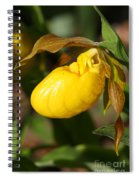 Yellow Lady's Slipper  Spiral Notebook