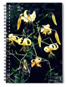 Yellow Lilies In Fort Tryon Park Spiral Notebook