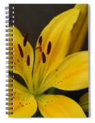 Yellow Lily 1 Spiral Notebook