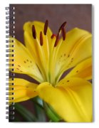 Yellow Lily 2 Spiral Notebook