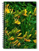 Yellow Lily Flowers Spiral Notebook
