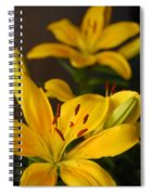 Yellow Lily Mirror Spiral Notebook