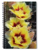 Yellow Long- Spined Prickly Pear Cactus  Spiral Notebook