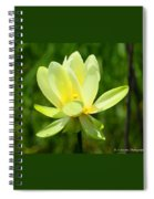 Yellow Lotus Spiral Notebook
