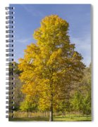 Yellow Maple Tree 1 Spiral Notebook