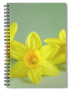 Yellow Mini Narcissus On Green 2 Spiral Notebook