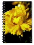 Yellow Mum With Raindrops Spiral Notebook