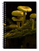 Yellow Mushrooms Spiral Notebook