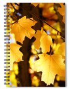 Yellow Nature Tree Leaves Art Prints Bright Baslee Troutman Spiral Notebook