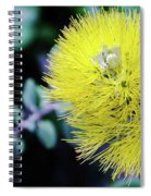 Yellow Ohia Flowers In Hawaii Spiral Notebook