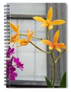 Yellow Orange And Purple Flowers Spiral Notebook