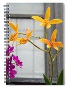 Yellow Orange And Purple Flowers Spiral Notebook