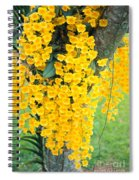 Yellow Orchids Spiral Notebook