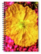 Yellow Poppy And Kalanchoe Flowers Spiral Notebook