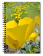 Yellow Poppy Flower Meadow Landscape Art Prints Baslee Troutman Spiral Notebook