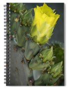Yellow Prickly Pear Cactus Bloom Spiral Notebook