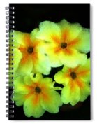 Yellow Primrose 5-25-09 Spiral Notebook