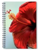 Yellow Red And Coral Hibiscus Profile Spiral Notebook