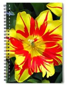Yellow Red Flower Spiral Notebook