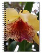 Yellow Red Orchid Spiral Notebook