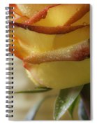 Yellow - Red Rose Spiral Notebook