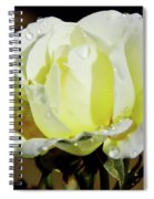 Yellow Rose Dew Drops Spiral Notebook