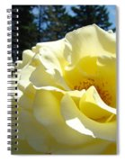 Yellow Rose Garden Landscape 3 Roses Art Prints Baslee Troutman Spiral Notebook