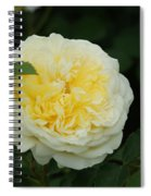 Yellow Rose Of Texas Too...   # Spiral Notebook