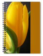 Yellow Rose Art Spiral Notebook