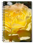 Yellow Rose Sunlit Summer Roses Flowers Art Prints Baslee Troutman Spiral Notebook