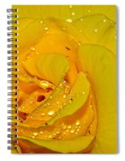 Yellow Rose With Droplets By Kaye Menner Spiral Notebook