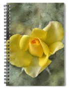 Yellow Rose With Old Marbel Texture Background Spiral Notebook