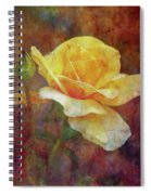 Yellow Rose With Raindrops 3590 Idp_2 Spiral Notebook