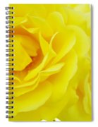 Yellow Roses Art Prints Botanical Giclee Prints Baslee Troutman Spiral Notebook