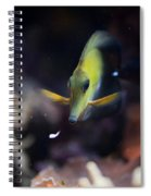 Yellow Spotted Aquarium Fish Spiral Notebook
