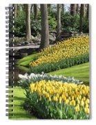 Yellow Spring Spiral Notebook