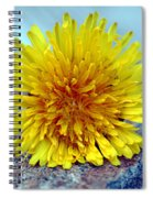Yellow Spring Spiral Notebook