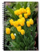 Yellow Spring Tulips Spiral Notebook